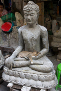 Cat pursues spiritual practice by sleeping in the lap of a statue of the Buddha