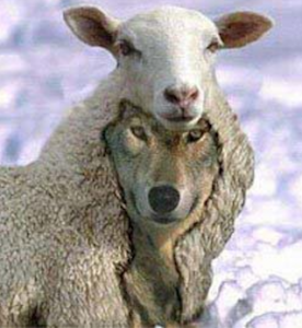 Wolf in sheep's clothing to illustrate the parable of the useless shepherd told by the prophet Zechariah