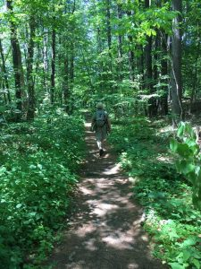 Charles, dressed in green, journeys into green woods in Massachusetts