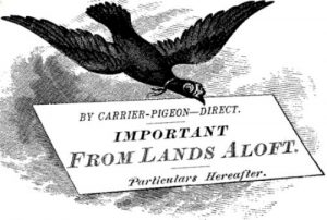 contact me via carrier pigeon