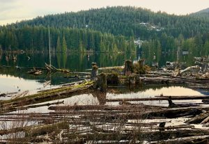 Logjam at Westwood Lake near Bethlehem Centre, a great place for a spiritual retreat.