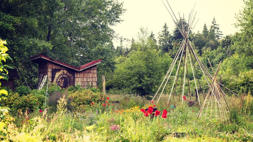 Tuwusht Indigenous Garden at University of British Columbia illustrating a post sharing some Indigenous teachings about land and sustainability.