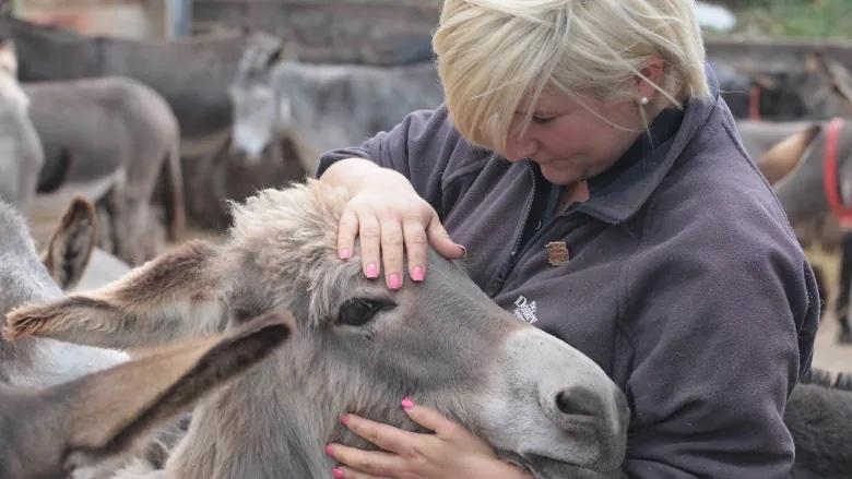 Woman Hugging Donkey